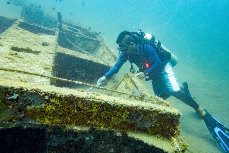 Dauin Philippines Muck Diving Site Photos -59