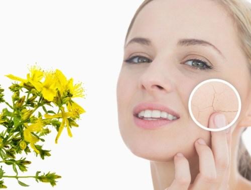 olio di iperico antirughe naturale proprietà benefici e controindicazioni