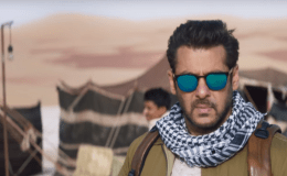 Tiger-Zinda-Hai-Collection-Report-Audience-Occupancy-Day10