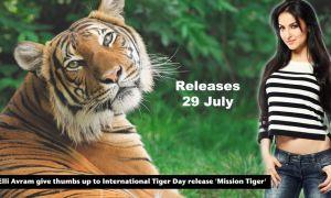 Elli Avram, International Tiger Day, Mission Tiger