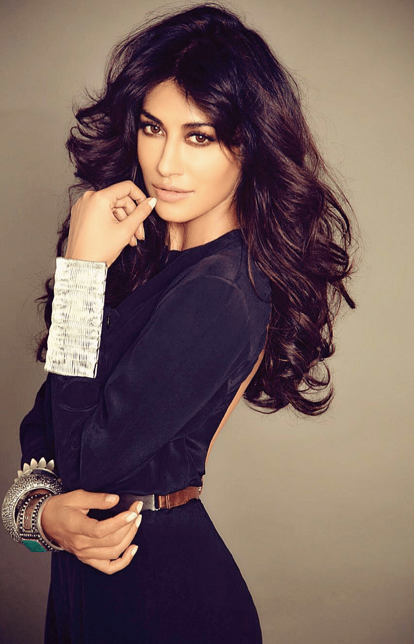Chitrangda, producer, Anees Bazmee