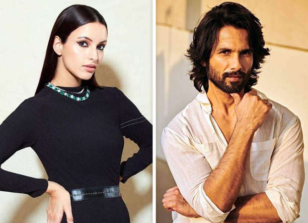 Triptii Dimri to be the leading lady of Shahid Kapoor's next with Sujoy Ghosh