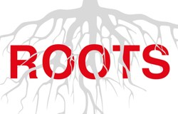 roots-list01
