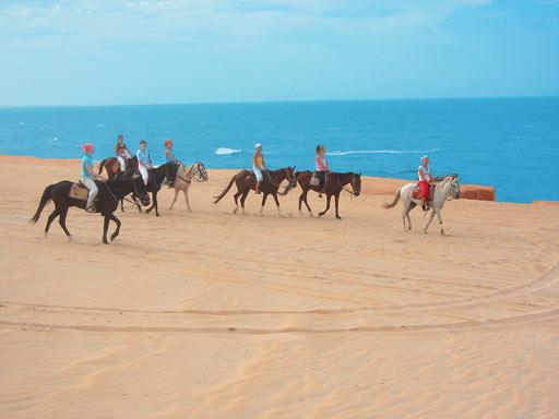 passeios a cavalo em Canoa Quebrada
