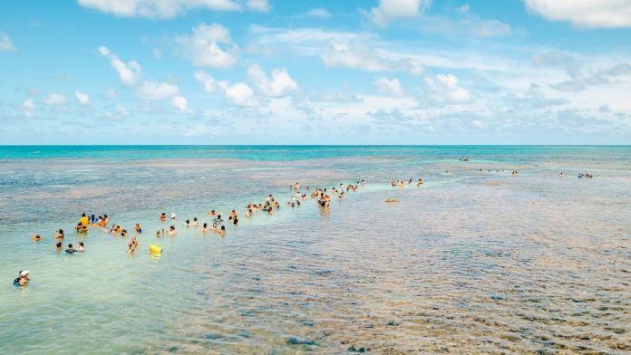 Turistas no banco de corais de Picaozinho, na maré baixa, perto da praia de Tambaú.