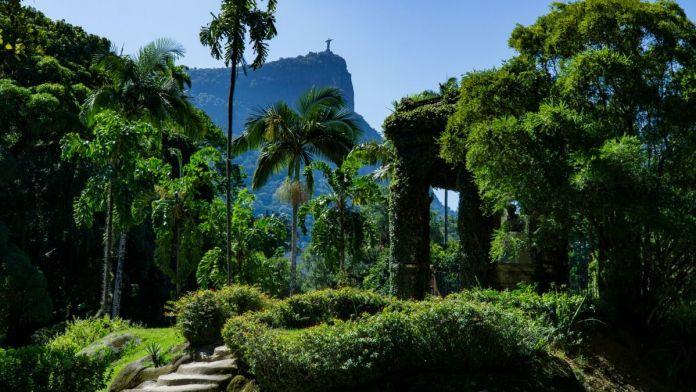 Belo Jardim Botânico - Rio de Janeiro