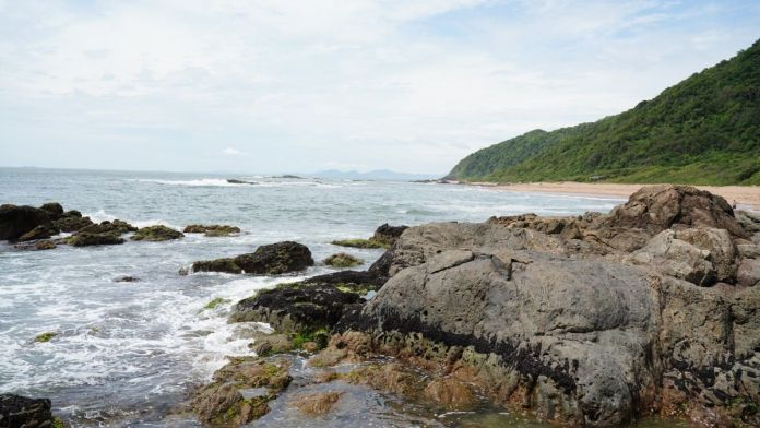 Praia Vermelha, Santa Catarina