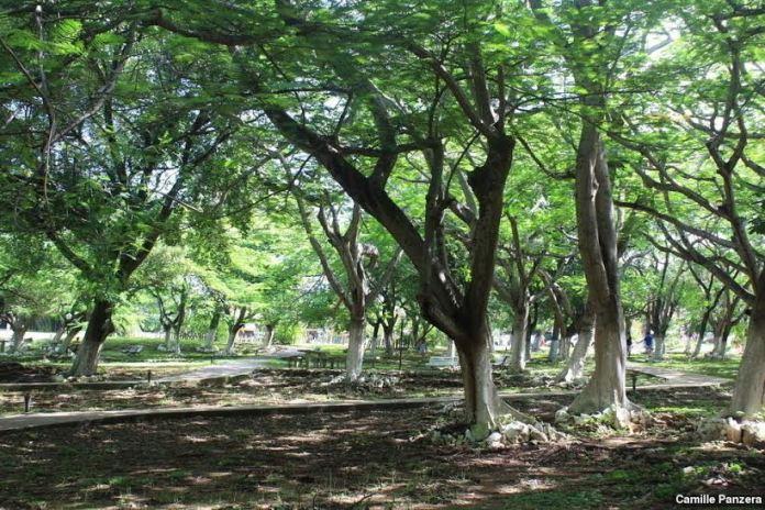 Vila dos Remédios em Fernando de Noronha