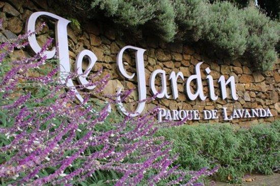 Le Jardin Parque de Lavanda é um belíssimo lugar para conhecer em Gramado