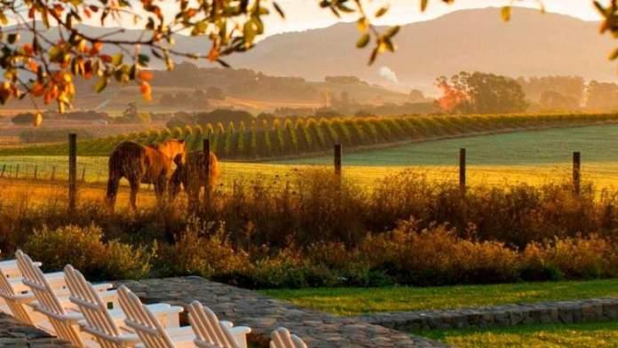 Califórnia é um dos melhores destinos para viajar em setembro