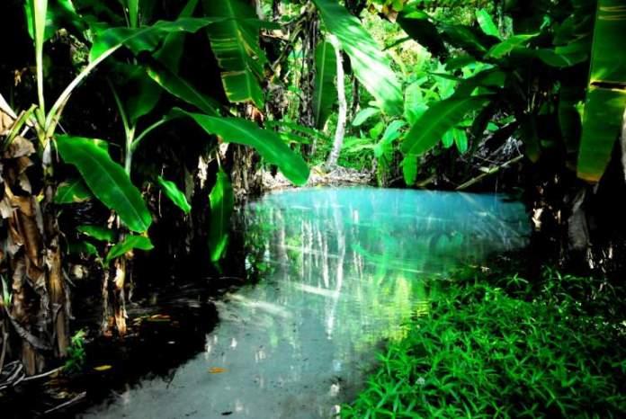 Jalapão é um dos melhores destinos para viajar em setembro