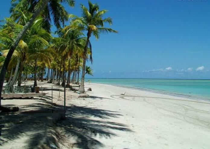 Praia do Toque em São Miguel dos Milagres - Alagoas é uma das praias mais bonitas do Brasil