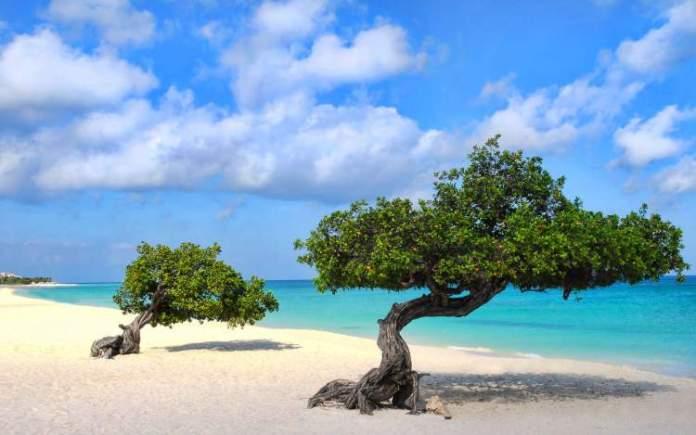 Eagle Beach é uma das melhores praias de Aruba