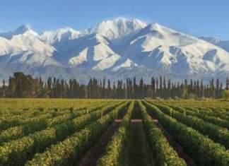 Mendoza na Argentina é um dos melhores destinos para viajar no feriado de Corpus Christi