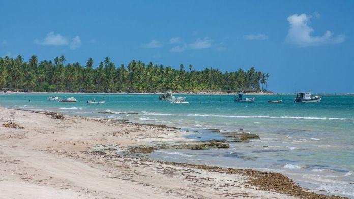 Conhecer Barra do Camaragibe é ter certeza que Alagoas é o Caribe brasileiro.