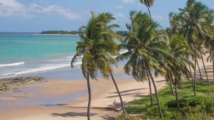 Conhecer a praia de Japaratinga é ter certeza que Alagoas é o Caribe brasileiro.