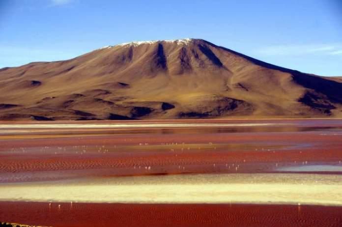 Visitar Laguna Colorada é uma das dicas de o que fazer na Bolívia