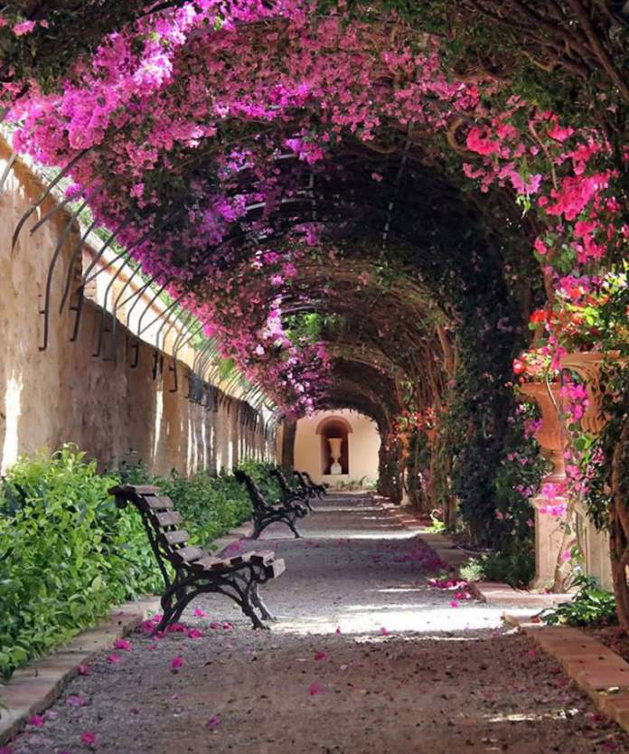 Valência na Espanha é um dos lugares que possui as mais belas ruas floridas do mundo
