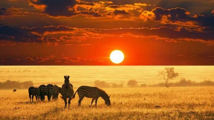 África do Sul é um dos destinos para viajar em Junho 2018