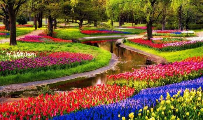 Conhecer a Holanda é um dos motivos para viajar em Abril 2018