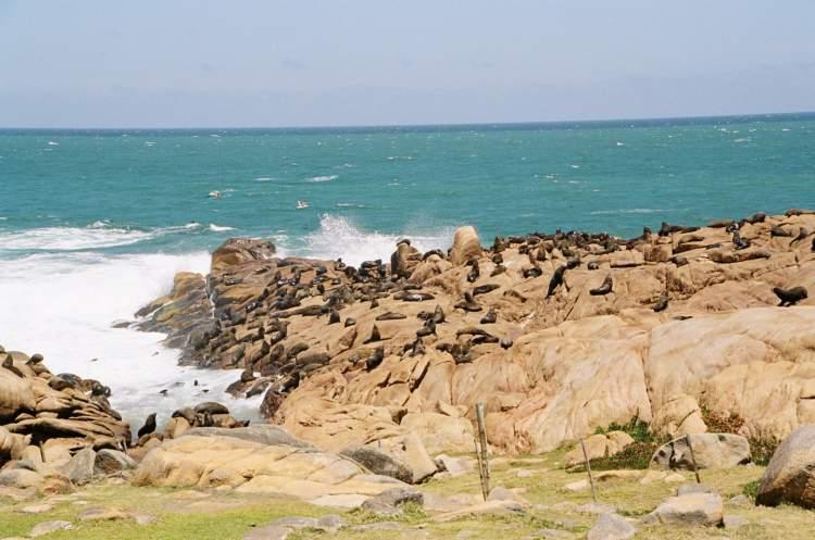 Cabo Polônio é um dos destinos encantadores no Uruguai