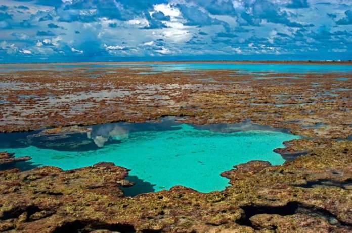 Atol das Rocas é uma das incríveis ilhas brasileiras