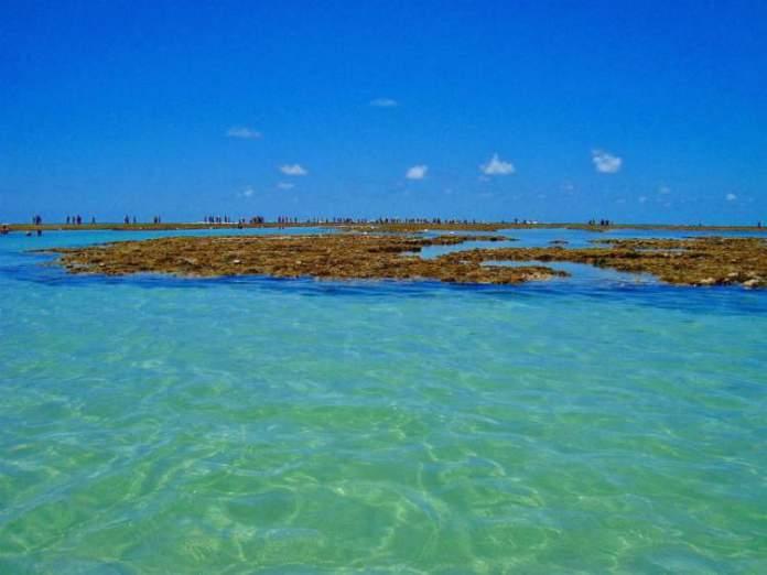 Praia Pontal de Maracaípe é uma das melhores Praias de Ipojuca