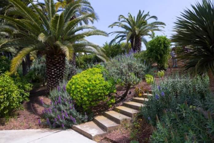 Jardim Botânico de Barcelona é uma das atrações gratuitas em Barcelona