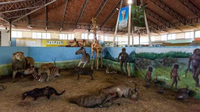 Museu Memorial do Cerrado é um dos lugares incríveis em Goiânia