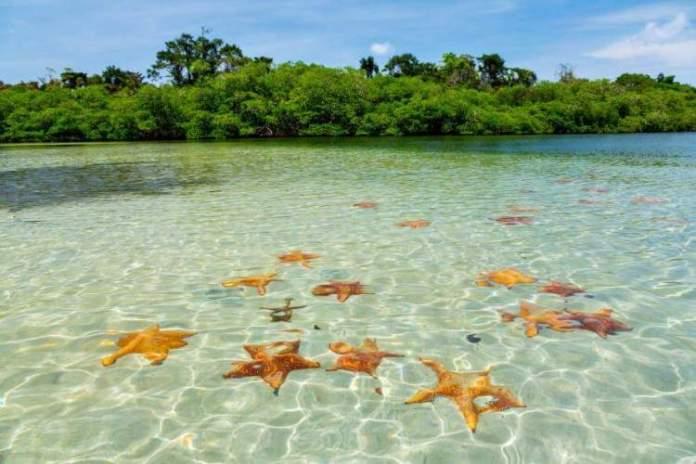 Playa de las Estrellas em Bocas del Toro Panamá