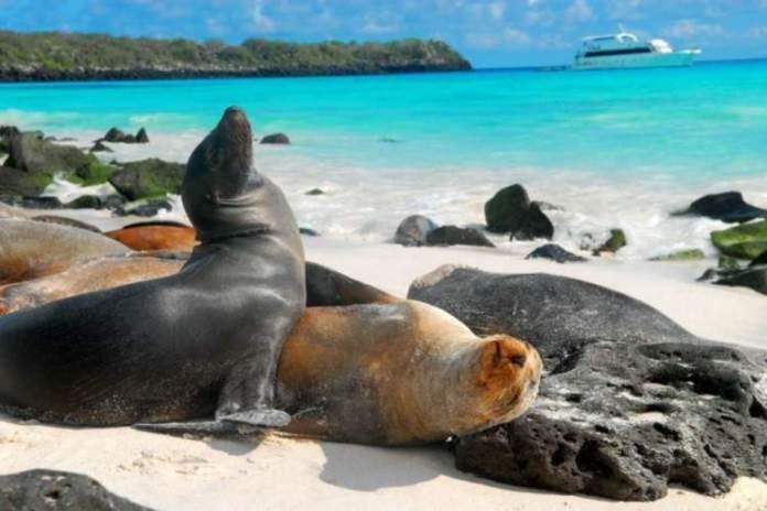 Galápagos é um dos destinos baratos para viajar em outubro de 2019