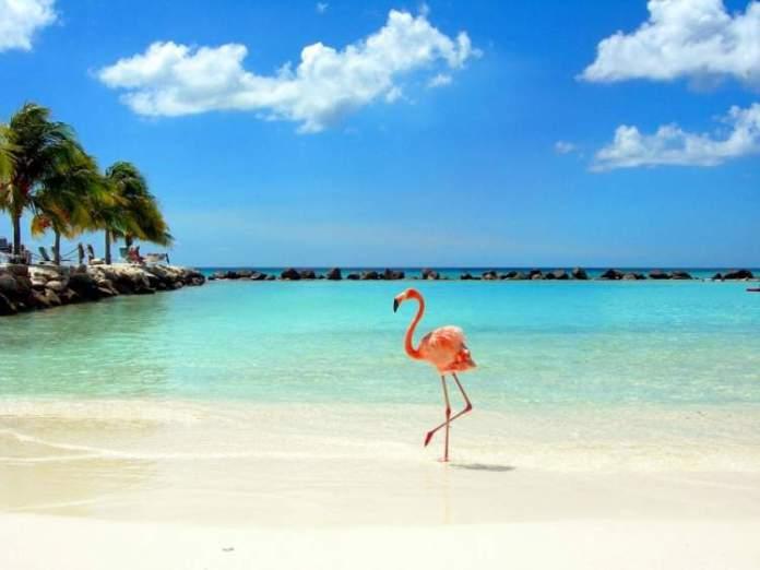 Melhor época para ir a Aruba post dois