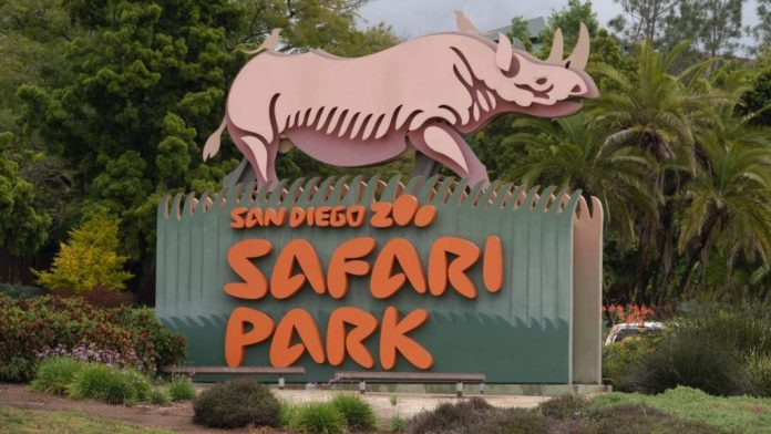Wild Animal Park Safari em San Diego, Califórnia