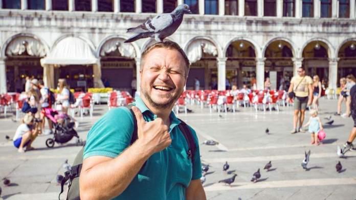 Homem sorridente e feliz, com pomba na cabeça na Piazza San Marco em Veneza, Itália.