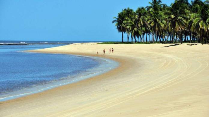 Praia do Gunga em Alagoas é uma das mais belas praias do Brasil