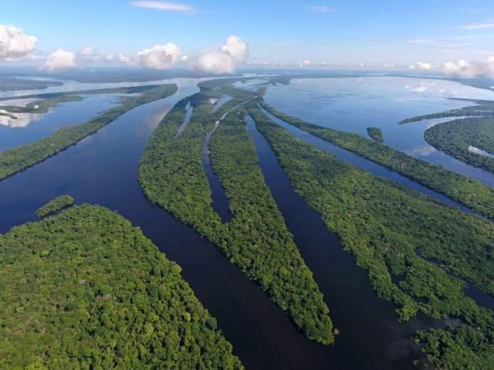 Arquipélago de Anavilhanas, Amazonas, Brasil.
