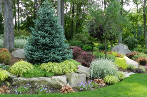 Best Landscaping companies near me - Wilton CT on Backyard Landscape Designers Near Me  id=92899