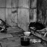 Argentina. ¿Dónde hacen cuarentena lxs sin techo?