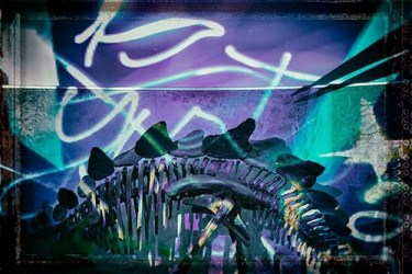 Bomber feat. Lichtfaktor, LumaPaint Station @ Bomber, »Saurierhalle« Bomber feat. Lichtfaktor & Alice Rose, LumaPaint Station @ Bomber LuxUs,Senckenbergmuseum Saurierhalle Luminale Frankfurt 2014