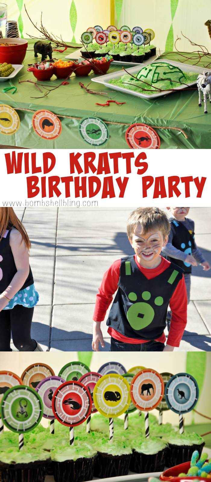 Wild Kratts birthday party pin collage