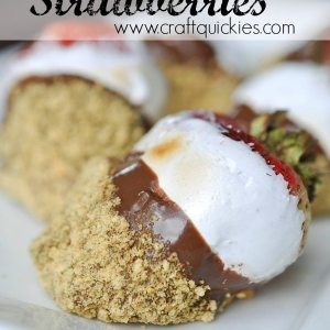 Holy moly! S'MORES DIPPED STRAWBERRIES! YUM!!