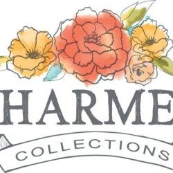 Charmed Collections Necklace Giveaway