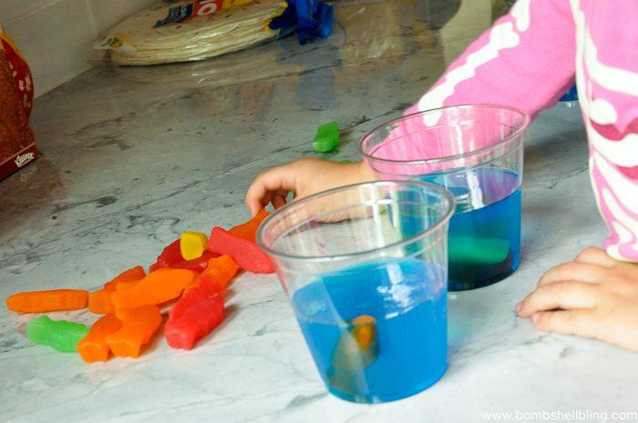 Ocean Inspired Jello Treats-3