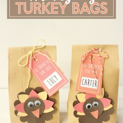Thanksgiving Turkey Bags