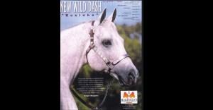 NEW WILD DASH
