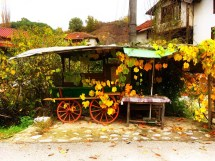 abandoned-fruit-stand