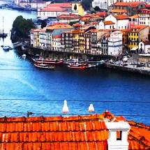 Porto 2 seagulls2
