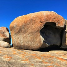 The Remarkable Rocks
