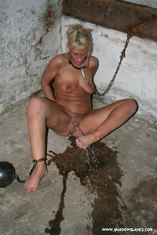 Milf putting rubber on with mouth gif