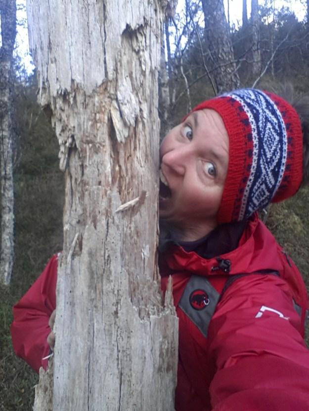 Her er et av bildene mine fra fb, med teksten: Hva gjør man når man er på tur i skogen og ikke har med mat? Gnager på et tre - selvfølgelig!